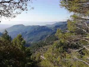 ¿Lo sabías? La Sierra de tramontana de Mallorca 7