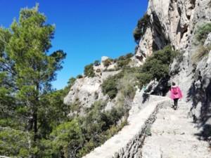 ¿Lo sabías? La Sierra de tramontana de Mallorca 8